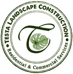 Testa Landscape Construction LLC